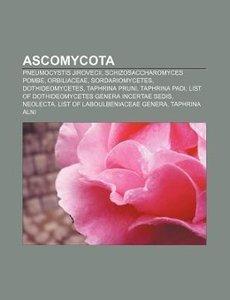 Ascomycota