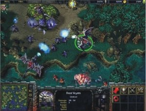 Bs Warcraft 3 (Fg)