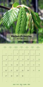 Green for Hope (Wall Calendar 2015 300 × 300 mm Square)