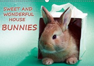 Sweet and wonderful house bunnies / UK-Version (Wall Calendar 20