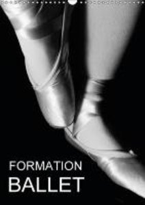 Formation Ballet (Calendrier mural 2015 DIN A3 vertical)