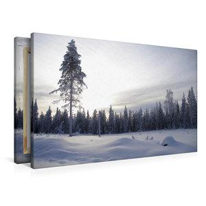 Premium Textil-Leinwand 90 cm x 60 cm quer Nadelwald im verschne