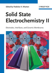 Handbook of Solid State Electrochemistry 2
