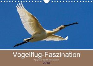 Vogelflug-Faszination (Wandkalender 2018 DIN A4 quer)