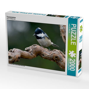 Tannenmeise 2000 Teile Puzzle quer