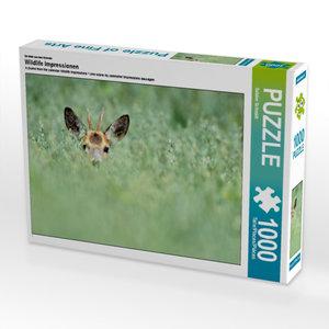 Ein Motiv aus dem Kalender Wildlife Impressionen 1000 Teile Puzz