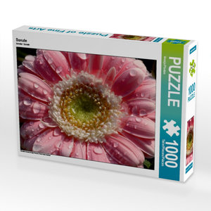 Sonate 1000 Teile Puzzle quer