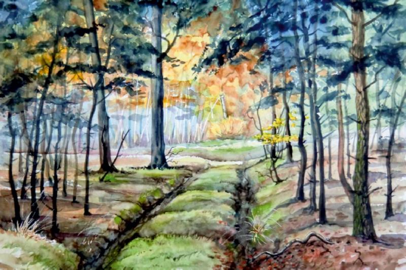 Premium Textil-Leinwand 45 cm x 30 cm quer Waldweg - zum Schließen ins Bild klicken
