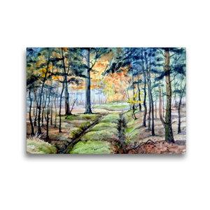 Premium Textil-Leinwand 45 cm x 30 cm quer Waldweg