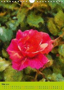 Malerische Rosen (Wandkalender 2019 DIN A4 hoch)