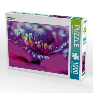 Mohnblume 1000 Teile Puzzle quer
