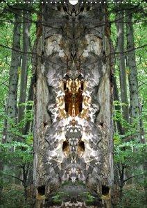Spiegelwelten - mystische Orte (Posterbuch DIN A4 hoch)