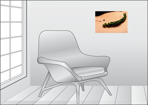 Premium Textil-Leinwand 45 cm x 30 cm quer grüner Pfeffer