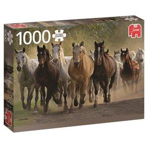 Eine Gruppe Pferde - 1000 Teile Puzzle