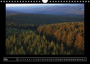 Wildes Sauerland (Wandkalender immerwährend DIN A4 quer)
