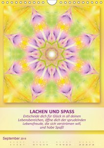Light Energy Mandalas - Kalender - Vol. 2