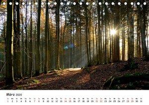 Meine schönsten Wanderwege (Tischkalender 2020 DIN A5 quer)