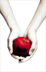 Twilight. White Cover