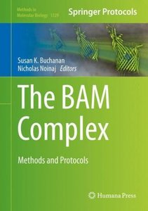 The Bam Complex
