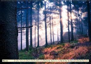 Mystische Wälder - Zauber der Natur (Wandkalender 2019 DIN A2 qu