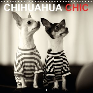 CHIHUAHUA CHIC (Calendrier mural 2015 300 × 300 mm Square)