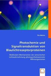 Photochemie und Signaltransduktion von Blaulichtrezeptorproteine