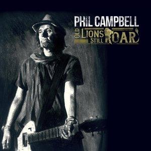 Old Lions Still Roar LP (black) in gatefold