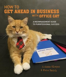How to Get Ahead in Business with Office Cat