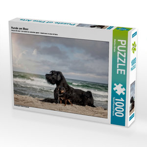 Hunde am Meer 1000 Teile Puzzle quer
