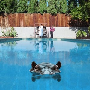 Hippopotamus (2LP Limited Picture Disc Edition)
