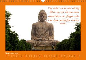 Buddha & Zitate