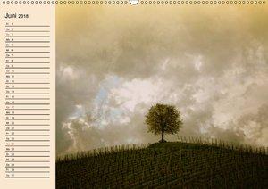 Weinanbau. Von der Traube zum Wein