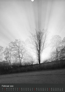 Natur in Schwarz und Weiß