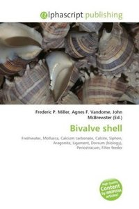 Bivalve shell