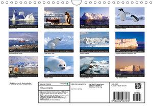 Arktis und Antarktis (Wandkalender 2019 DIN A4 quer)