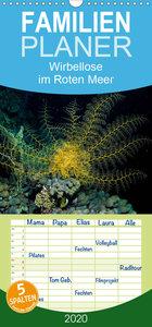 Wirbellose im Roten Meer - Familienplaner hoch (Wandkalender 202