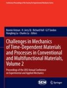 Challenges in Mechanics of Time-Dependent Materials and Processe