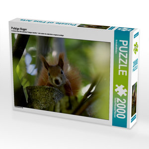 Putzige Nager 2000 Teile Puzzle quer