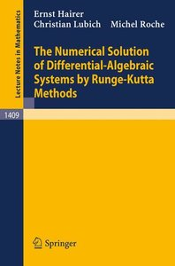 The Numerical Solution of Differential-Algebraic Systems by Rung