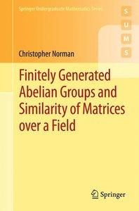 Finitely Generated Abelian Groups and Similarity of Matrices ove