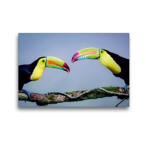 Premium Textil-Leinwand 45 cm x 30 cm quer Regenbogentukan