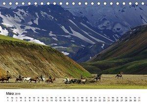 Die Pferde Islands (Tischkalender 2019 DIN A5 quer)