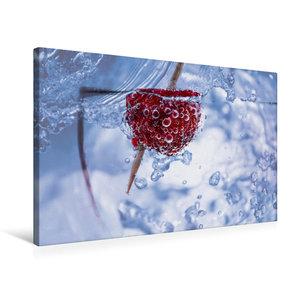 Premium Textil-Leinwand 75 cm x 50 cm quer Himbeere im Wassergla