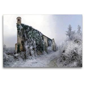 Premium Textil-Leinwand 120 cm x 80 cm quer Raureif auf der Will