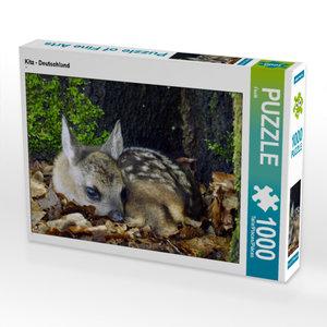 CALVENDO Puzzle Kitz - Deutschland 1000 Teile Lege-Größe 64 x 48