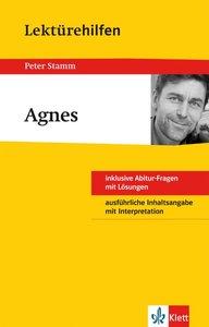 "Lektürehilfen Peter Stamm ""Agnes"""