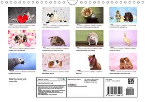 total tierisch just animals (Wandkalender 2019 DIN A4 quer)