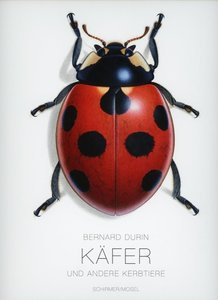 Käfer und andere Kerbtiere