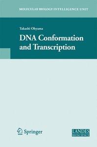 DNA Conformation and Transcription