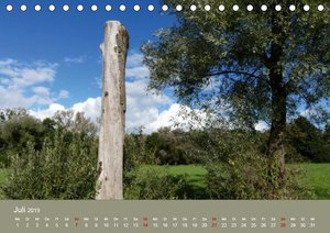 Eriskircher Ried - Naturschutzgebiet am Bodensee (Tischkalender